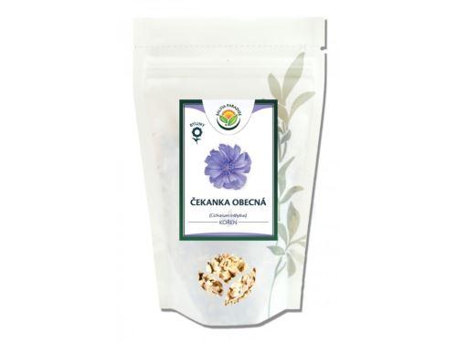 Salvia Paradise Čekanka kořen 100g