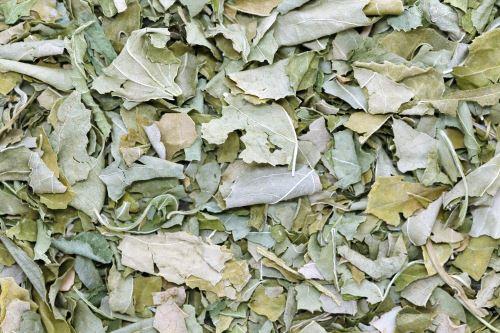 AWA herbs Mučenka nať 100g